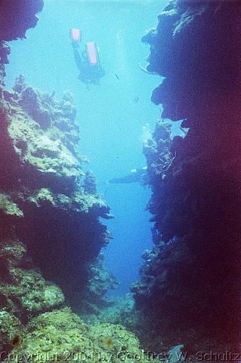 Bluejacket roatan dive sites at the west end honduras - Roatan dive sites ...