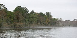 Miles of Swamp