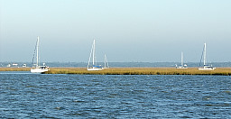 Boats Anchored in Marshes